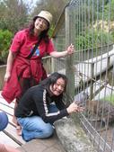 紐西蘭風情:天堂樂園2.JPG