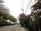 2015.03.15 媽祖萬人崇bike 大甲-彰化-雲林-嘉義:BIKE媽祖-139.JPG