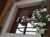 2015.06.30 義大利Wilier豪華團之旅- CORTINA [飯店街道篇+纜車餐廳]:飯店街道隨手拍-116.JPG