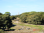 Rottnest Island:DSC09357