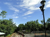 大塔山~對高岳:33.JPG