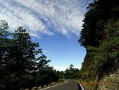 大塔山~對高岳:26.JPG
