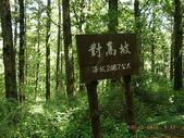 大塔山~對高岳:36.JPG