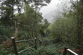土匪山~大湖尖山:035.jpg