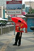 2010 東南亞之旅 VII:DSC_0513.JPG