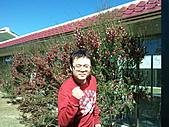 2010年10月25日 大禹嶺+翠峰:梨山福壽山農場 遊客中心 庄活力.jpg