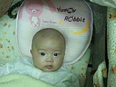 1120到1220 Dora第三個月生活照:1129 Dora 可愛.jpg