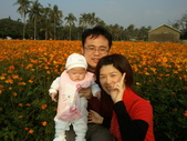 2011年Dora的人生第一個春節:0204Dora 黃色花海迎新春.jpg