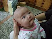 1120到1220 Dora第三個月生活照:1206Dora 水汪汪眼睛.JPG
