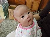 1120到1220 Dora第三個月生活照:1206Dora 好像男生.JPG