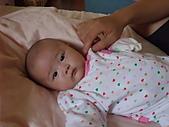 1120到1220 Dora第三個月生活照:1206Dora 近照.JPG