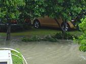2009年8月9日   88水災 早上 到中午 水退潮中:DSC06668.JPG