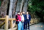 影音文章所使用過的照片:阿里山神木