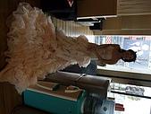 2009年1月18日  珍琳蘇  拍婚紗:DSCF0708.jpg