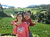 2010年10月25日 大禹嶺+翠峰:梨山福壽山農場  我和鶴齡.jpg