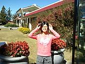 2010年10月25日 大禹嶺+翠峰:梨山福壽山農場 遊客中心 裝可愛.jpg