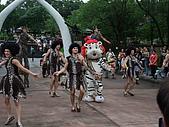 2010年06月15日 六福村:2010年06月15日 六福村55 小白虎.JPG