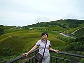 2010年08月下旬花蓮行:P1050724.JPG