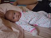 1120到1220 Dora第三個月生活照:1206Dora 擺pose.JPG