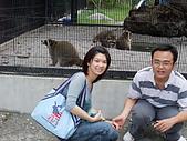 2008年國慶日  花蓮行 第一天 兆豐農場:DSCF0201.JPG