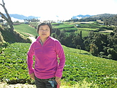 2010年10月25日 大禹嶺+翠峰:梨山福壽山農場 老媽耍酷.jpg