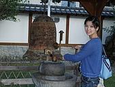 2008年國慶日  花蓮行 第二天 吉安慶修院+鬱金香花園:DSCF0377.JPG
