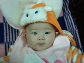 2011年Dora的人生第一個春節:0122Dora 嘟嘴特寫.jpg