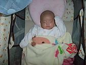 1020到1120 Dora  第二個月的成長點滴:1105 熟睡中.JPG