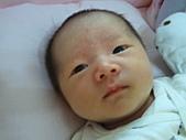 2010.10.01~10月14日 Dora 24天前點滴:10月09日 Dora變胖版.jpg
