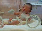 2010年父親節聚餐+陳子路孩子:DSCF1243.JPG