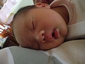 2010.10.01~10月14日 Dora 24天前點滴:10月03日 酣睡的Dora.JPG
