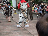 2010年06月15日 六福村:2010年06月15日 六福村57 小白虎裝可愛.JPG