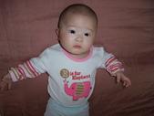 2011年Dora的人生第一個春節:0125Dora 特寫.JPG