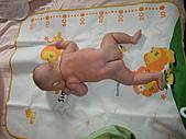 1120到1220 Dora第三個月生活照:1207Dora香浴 背部全裸.JPG