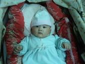 2011年Dora的人生第一個春節:0125Dora 專注看鏡頭.jpg