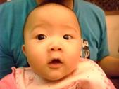 2011年0220到0420(Dora第五到7個月生活點滴:0416Dora 近拍.JPG