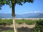 旅遊札記:花東縱谷平原