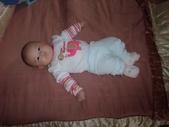 2011年Dora的人生第一個春節:0125Dora 躺在床上.JPG