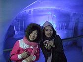 2009年05月26日 少女峰:DSCF4688.JPG