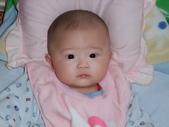 2011年Dora的人生第一個春節:0126Dora 有長出頭髮.JPG