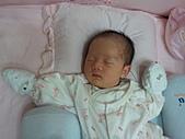 2010.10.01~10月14日 Dora 24天前點滴:10月12日 Dora睡姿第二套.jpg