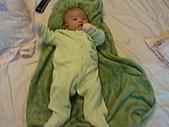 1120到1220 Dora第三個月生活照:1212Dora青蛙裝.jpg