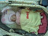 1120到1220 Dora第三個月生活照:1128 悠閒躺搖籃.jpg