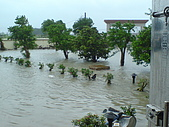 2009年8月9日   88水災 早上 到中午 水退潮中:DSC06672.JPG