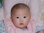 2011年Dora的人生第一個春節:0126Dora 近拍.JPG