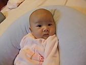 1020到1120 Dora  第二個月的成長點滴:1112 Dora.JPG