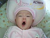 1120到1220 Dora第三個月生活照:1128 悠閒躺搖籃 打哈欠.jpg