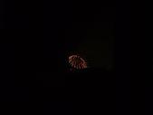 2008年國慶日  花蓮行 第二天 歐式庭院民宿+煙火:DSCF0421.JPG