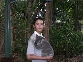 2006東澳黃金雪梨遊:我老弟