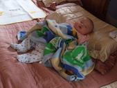 2011年Dora的人生第一個春節:0126Dora 睡午覺.JPG